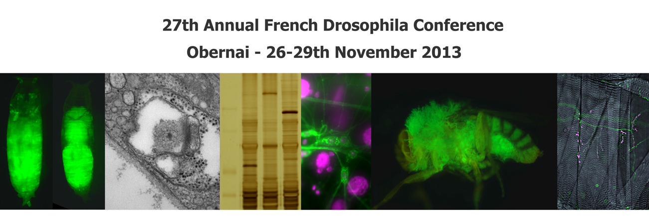 27th Annual French Drosophila Conference